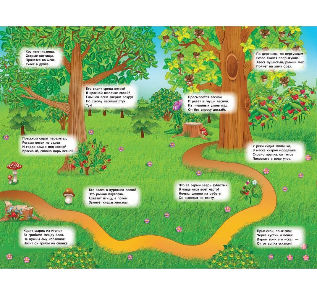 загадки про лес с картинками регулировка уровня